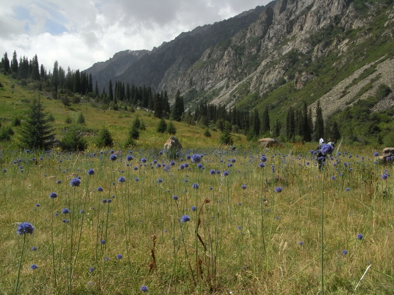 Fedchenko Glacier Expedition and Tajikistan Kirghis Rep ...